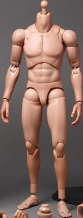 Hot Toys TrueType - Regular Body Sixth Scale Figure