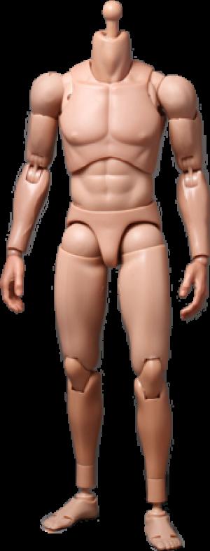 TrueType - Regular Body Sixth Scale Figure