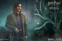 Gallery Image of Sirius Black Sixth Scale Figure
