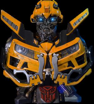 Bumblebee - Dark of the Moon Bust