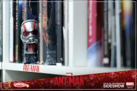 Gallery Image of Ant-Man Vinyl Collectible