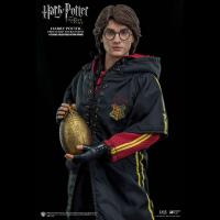 Gallery Image of Harry Potter (Triwizard Tournament Version) Sixth Scale Figure
