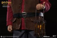 Gallery Image of Rubeus Hagrid Sixth Scale Figure