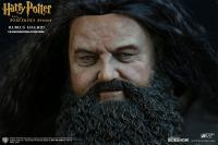Gallery Image of Rubeus Hagrid - Deluxe Version Sixth Scale Figure