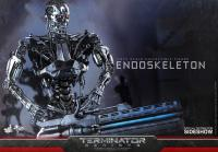 Gallery Image of Endoskeleton Sixth Scale Figure