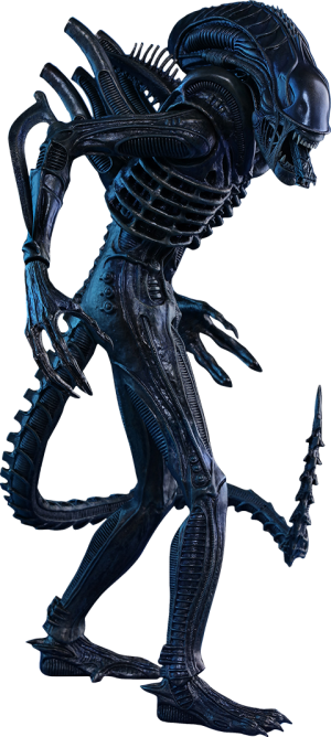 Alien Warrior Sixth Scale Figure