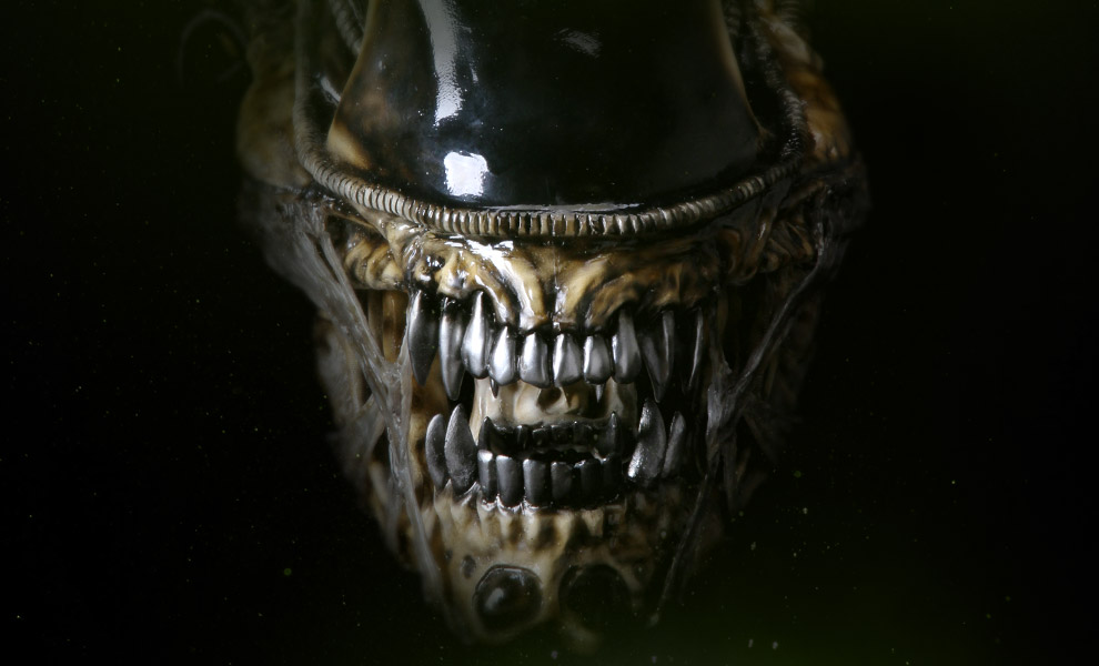 Gallery Feature Image of Alien Warrior Life-Size Head Prop Replica - Click to open image gallery
