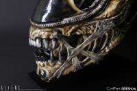 Gallery Image of Alien Warrior Life-Size Head Prop Replica