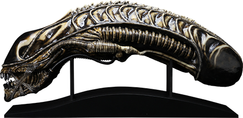 CoolProps Alien Warrior Life-Size Head Prop Replica