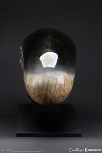 Gallery Image of Dog Alien Life-Size Head Prop Replica