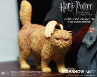 Gallery Image of Hermione Granger Teenage Version Sixth Scale Figure
