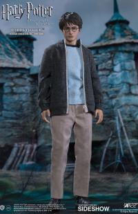Gallery Image of Harry Potter Teenage Version Sixth Scale Figure