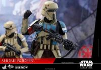 Gallery Image of Shoretrooper Sixth Scale Figure
