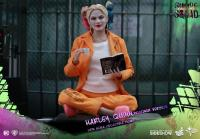 Gallery Image of Harley Quinn Prisoner Version Sixth Scale Figure