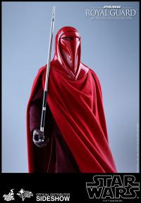 Gallery Image of Royal Guard Sixth Scale Figure