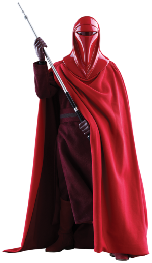 Royal Guard Sixth Scale Figure