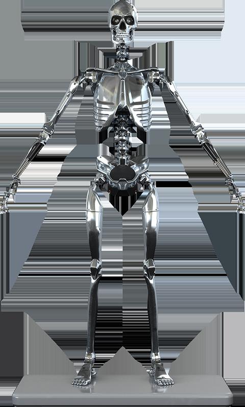 Molecule8 Mark I Endoskeleton Sixth Scale Figure