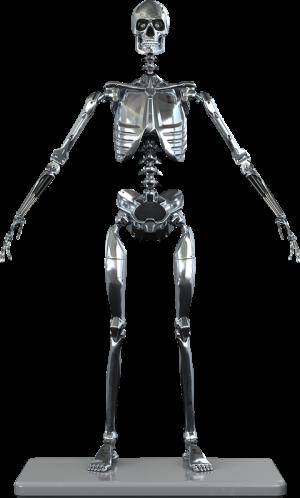Mark I Endoskeleton Sixth Scale Figure