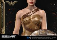 Gallery Image of Wonder Woman Training Costume Statue