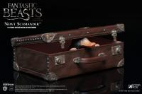 Gallery Image of Newt Scamander Sixth Scale Figure
