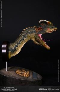 Gallery Image of Dilophosaurus Bust