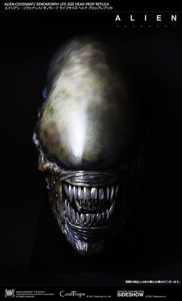 Alien: Covenant Xenomorph Life-Size Head Prop Replica by Coo