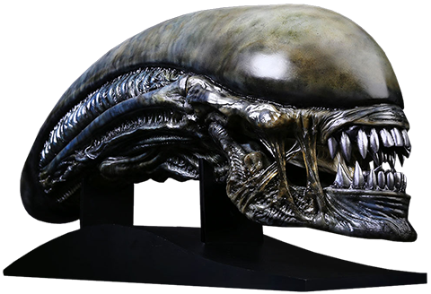 Life-Sized Xenomorph Head