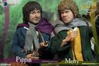 Gallery Image of Merry Slim Version Sixth Scale Figure