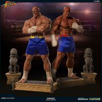Gallery Image of Sagat Evolution Collectible Set