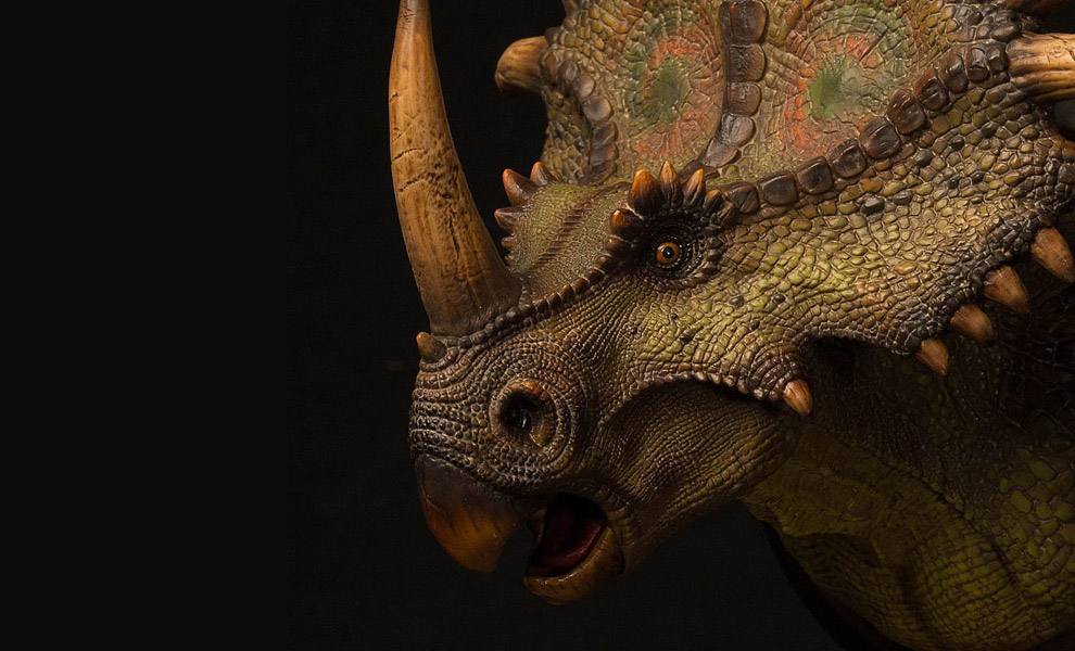 Gallery Feature Image of Styracosaurus Bust - Click to open image gallery