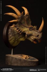 Gallery Image of Styracosaurus Bust