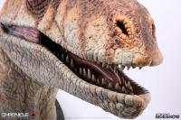 Gallery Image of Male Raptor Life-Size Bust