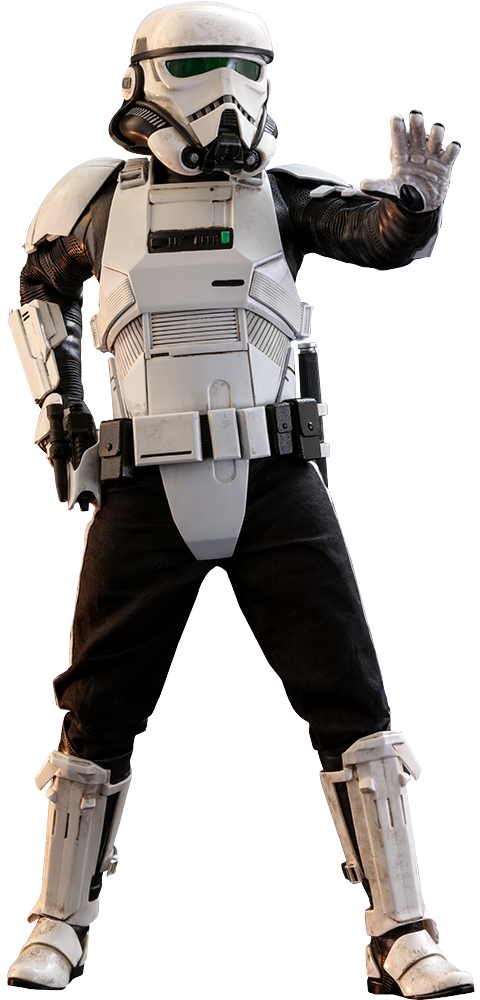 Hot Toys Patrol Trooper Sixth Scale Figure