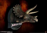 Gallery Image of Triceratops Bust