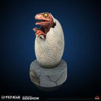Gallery Image of Hatching Baby Raptor Prop Replica