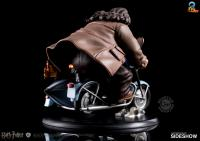 Gallery Image of Harry Potter and Rubeus Hagrid Q-Fig Max Diorama