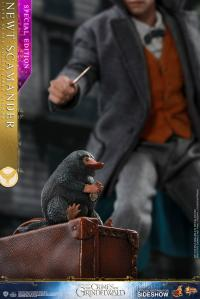 Gallery Image of Newt Scamander Special Edition Sixth Scale Figure