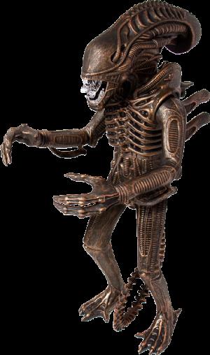 "Xenomorph Bronze 18"" Figure"