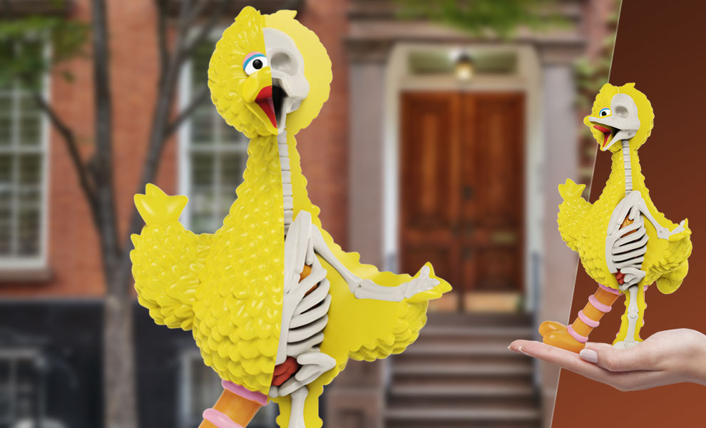 Gallery Feature Image of XXRAY Plus: Big Bird Collectible Figure - Click to open image gallery