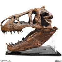 Gallery Image of T-Rex Skull Replica