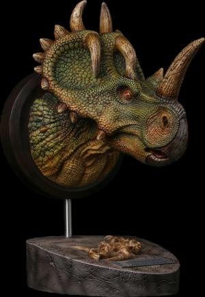 Centrosaurus Bust