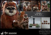 Gallery Image of Wicket Sixth Scale Figure