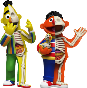 XXRAY Plus: Bert & Ernie Collectible Set