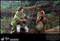 Gallery Image of Princess Leia & Wicket Sixth Scale Figure Set