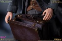 Gallery Image of Newt Scamander Action Figure