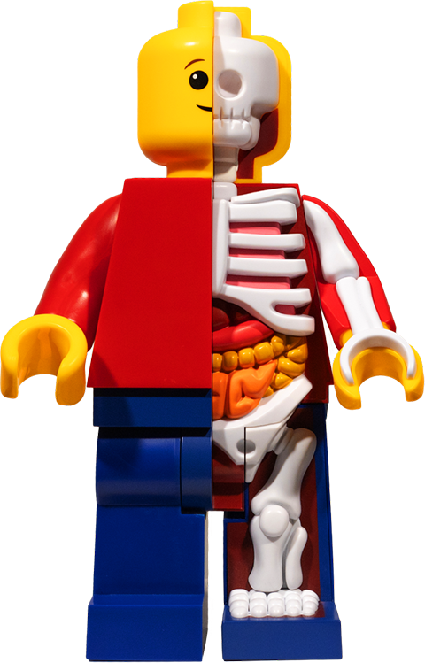 Mighty Jaxx Supersized Micro Anatomic (Junior) Collectible Figure