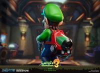 Gallery Image of Luigi Statue