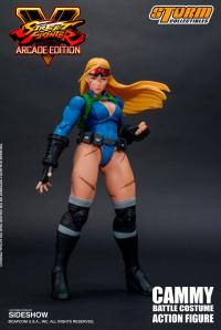 Gallery Image of Cammy (Battle Costume) Action Figure