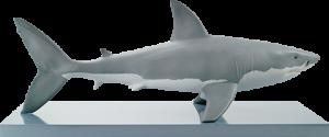 White Shark Figurine