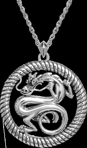 Mushu Medallion (Silver) Necklace Jewelry